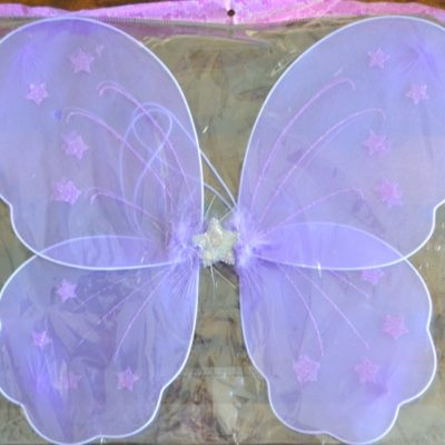 EK Dance Academy Fairy Wings